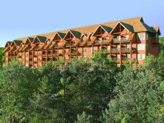 Big Cedar Spring-break Special - Ridgedale vacation rentals