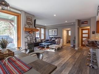 Gorgeous 2 bedroom Mammoth Lakes House with Internet Access - Mammoth Lakes vacation rentals