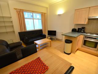 1 BR FLAT NEAR ANGEL AND LIVERPOOL ST ZONE 1 - London vacation rentals