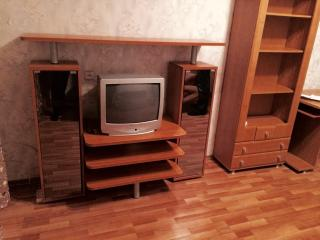Cozy Condo with Internet Access and Television - Pskov vacation rentals