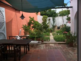 House in Historic Old Town With private garden - Tavira vacation rentals