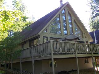 Little Bear Hideaway Lakefront W/OUTDOOR HOT TUB! - Gaylord vacation rentals