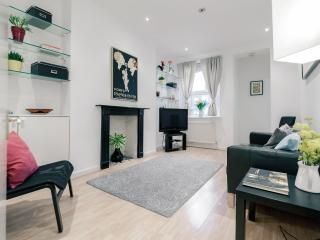 Fantastic 2 bed flat in Bayswater - Notting Hill - London vacation rentals