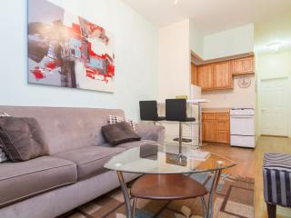 Amazing 1Bedroom / Time Sq / Sleep 4 /  Best Area - New York City vacation rentals