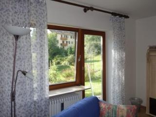 Vacation Apartment in Sankt Georgen im Schwarzwald (# 6602) ~ RA63276 - Saint Georgen im Schwarzwald vacation rentals