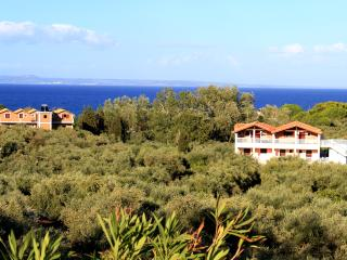 Arazzo Holiday family apartment #5 - Zakynthos vacation rentals