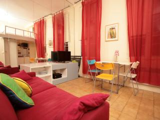 Perfect 1 bedroom Condo in 4th Arrondissement Hôtel-de-Ville - 4th Arrondissement Hôtel-de-Ville vacation rentals
