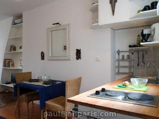 Sunny Condo with Internet Access and DVD Player - 11th Arrondissement Popincourt vacation rentals