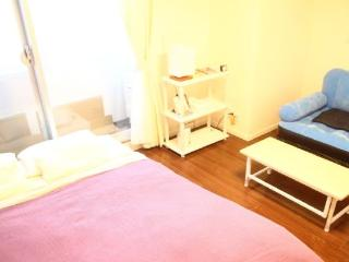 1 bedroom Condo with Grill in Chiyoda - Chiyoda vacation rentals