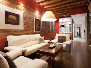 Wonderful apartment with charm - Barcelona vacation rentals