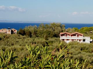 Arazzo Family friendly holidays with self catered. - Ano Vasilikos vacation rentals