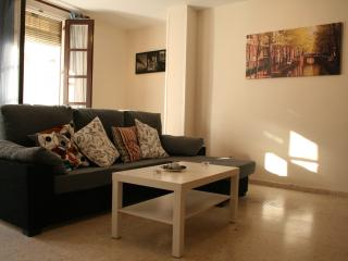 [96] Lovely 3 bedrooms apartment in the centre - Seville vacation rentals