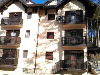 Apartment Bubica - Zlatibor vacation rentals