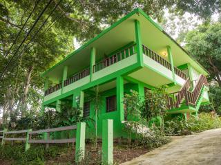 Casa Buena Vida - Rincon vacation rentals