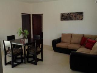 Fully furnished modern apartment in Merida north. - Merida vacation rentals