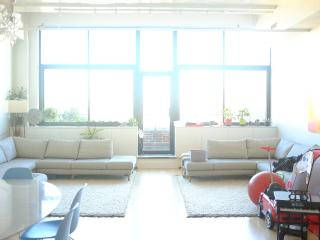 Giant Modern Apt/ 2 Bedrooms/2 Baths - Brooklyn vacation rentals