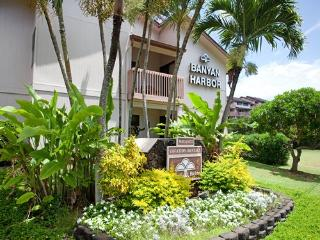 Banyan Harbor - 1 block from Kalapaki Beach - Lihue vacation rentals