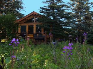 Bear Paw Adventure - Moose Cabin - Anchor Point vacation rentals