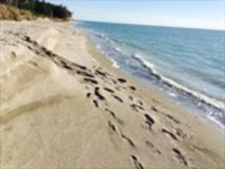 Stay on Siesta - Blind Pass - Sarasota vacation rentals
