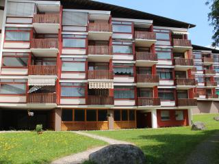 2 bedroom Apartment with Internet Access in Schluchsee - Schluchsee vacation rentals