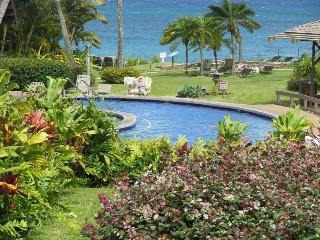1 bedroom House with Shared Outdoor Pool in Kahana - Kahana vacation rentals