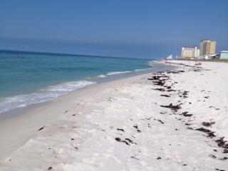 Gulf View, 2BR/2Bath Condo, sleeps up to 8 - Pensacola Beach vacation rentals
