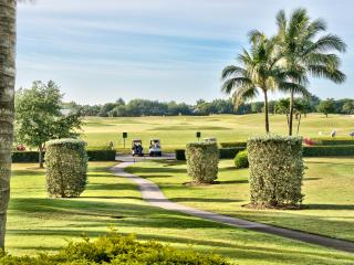 Vicenza Golf Condo at the Lely Resort  *Golf View* - Naples vacation rentals