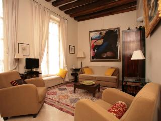 Beautiful Latin Quarter 1 Bedroom (197) - 5th Arrondissement Panthéon vacation rentals