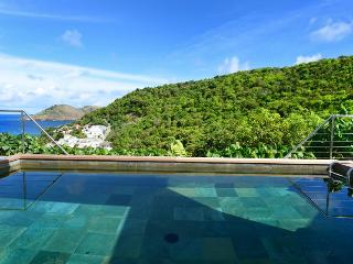 Magic Bird - Ideal for Couples and Families, Beautiful Pool and Beach - Flamands vacation rentals