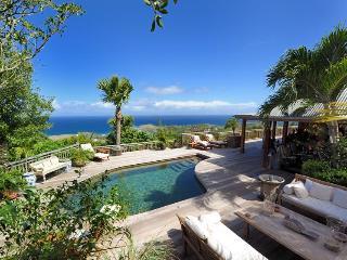 An Extraordinary villa for Extraordinary People - Grand Fond vacation rentals
