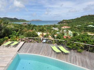 Walking distance to Nikki Beach & the Eden Rock Hotel - Saint Jean vacation rentals