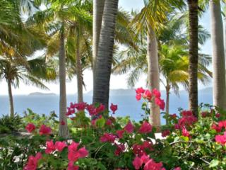 Set on a private 2-acre Estate with incredible ocean views. - Tortola vacation rentals