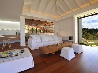 Contemporary Design blended with Exotic Woods - Lurin vacation rentals
