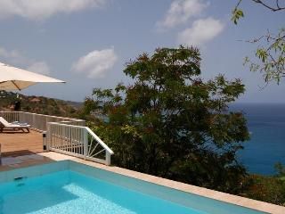 Perfect Anse des Flamands vacation Villa with Private Outdoor Pool - Anse des Flamands vacation rentals