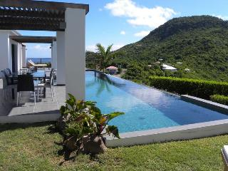 Contemporary Villa in a very private setting - Grand Fond vacation rentals
