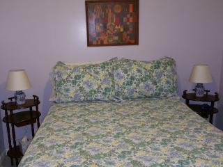 1 bedroom Garden apt near harvard/MIT - Cambridge vacation rentals