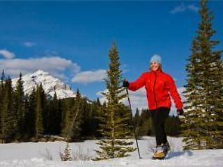 LUXURY MOUNTAIN RESORT HOLIDAY - Banff vacation rentals