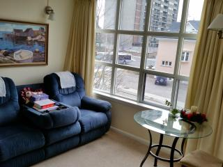Luxury Condo in the heart of the city - Kitchener vacation rentals