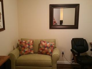 Upscale City Centre Apartment - Houston vacation rentals