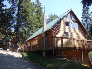 Ceder Cabin Overlooking Lake PendOreille, Sandoint - Sagle vacation rentals