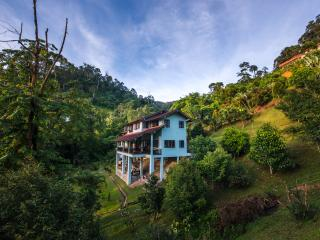 Rest. Pause. Rainforest Retreat - Janda Baik vacation rentals