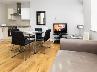 Deluxe 2 Bedroom Soho London Apt - London vacation rentals