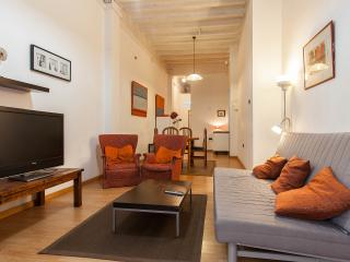 Spacious Family Apartment with Patio: Centre - Barcelona vacation rentals