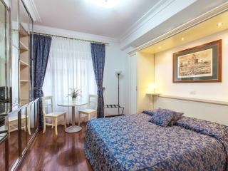 VATICAN - BIG APART - ALL INCLUSIVE -NO COMMISSION - Rome vacation rentals
