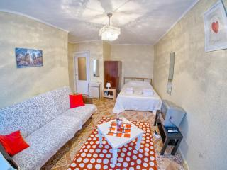 One bedroom near Railroad Station - Nizhniy Novgorod vacation rentals
