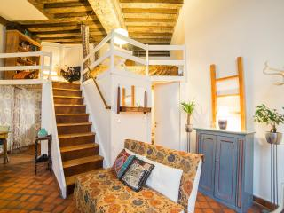 LIKE A PARISIAN - MARAIS - MUSICIAN LOFT - Paris vacation rentals