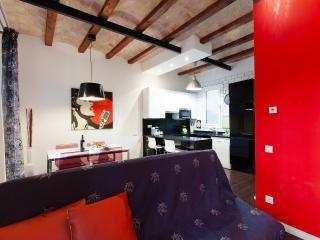 2 Bedrooms Spacious Barcelona Center Flat - Barcelona vacation rentals