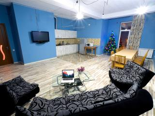 17 beds comfortable apartament Tbilisi - Tbilisi vacation rentals