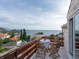 Beautiful Dubrovnik vacation Apartment with Internet Access - Dubrovnik vacation rentals