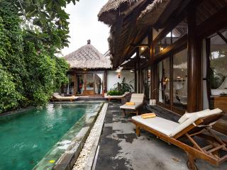 Rustic Luxury: Villa Ananda Sri - Ubud vacation rentals
